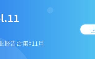 11.《行业报告11月合集》